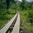 至仏山への木道