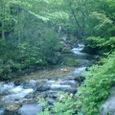 渓流の眺めは素晴らしい