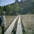 尾瀬沼木道と旅人