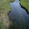 池塘の裂け目
