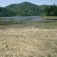 池塘と尾瀬沼