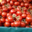 朝市 トマト