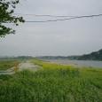 河口は白村江 古戦場