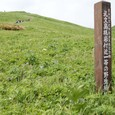 桃岩付近の天然記念物