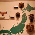 縄文時代 仮面