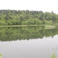 姫沼 周囲1キロ歩く