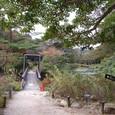 六甲高山植物園 庭園