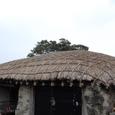 毎年屋根のカヤは追加し、7年で総取換え