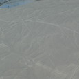 ナスカ地上絵
