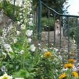 花のある階段