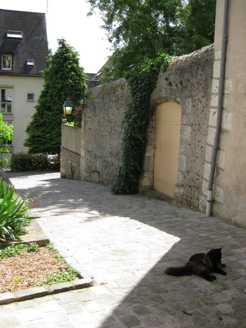 黒猫の昼寝