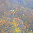 谷川岳雨の日の紅葉