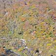 谷川岳麓は紅葉