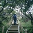 塔ノ岳 最後の登り