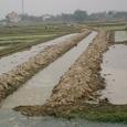 水の支配は伝統知恵