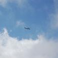 観光ヘリが飛ぶ