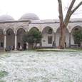 第三の庭雪模様