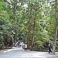 亀橋を渡り多賀宮への参道