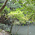 正殿前の池