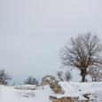 雪で遺跡が判らん