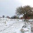 ローマ時代の遺構 大理石の石柱