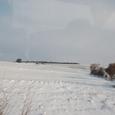 ヒサルルクの丘 雪模様