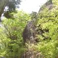 見上げる岩ちゃん