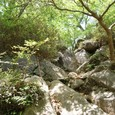 岩の急な登りが続く