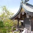 イザナミさんを祭る(筑波山神社)