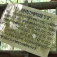 筑波山は植物の博物館です