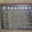 筑波山の四季の花