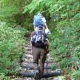 新緑の道を登る