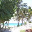 海亀産卵のビーチ