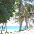 トゥルム遺跡の砂浜