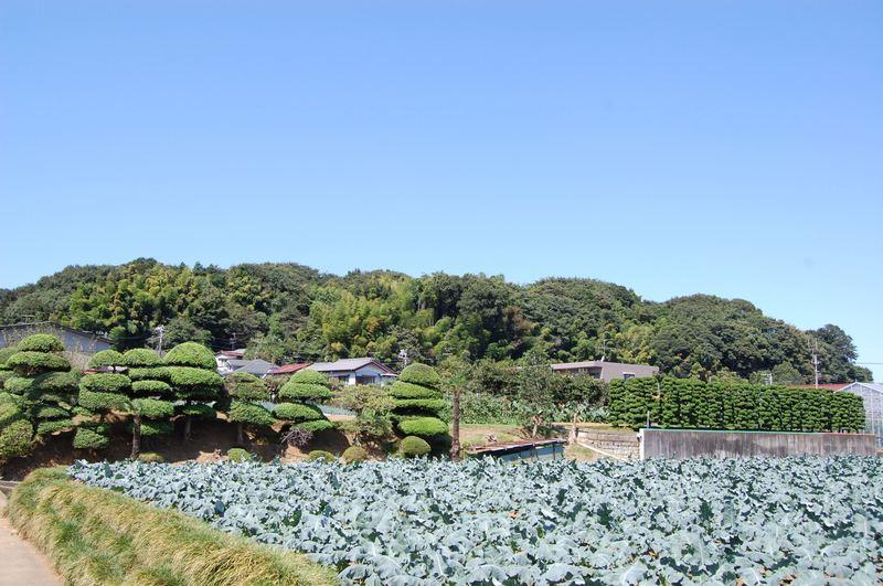 20099kozukue_034