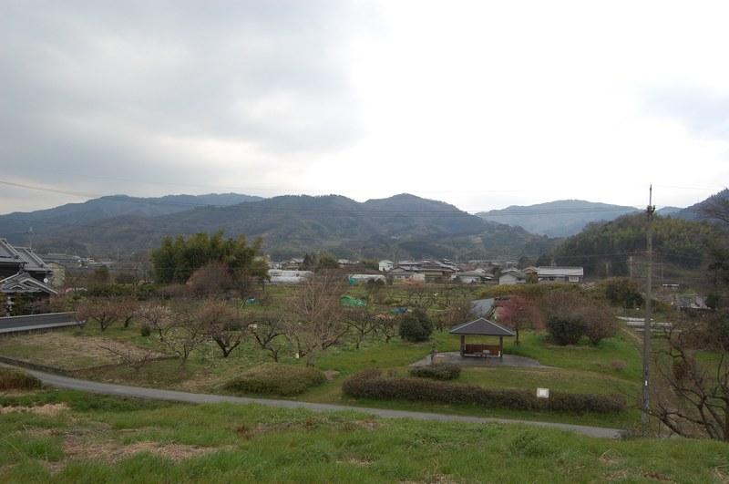 20093nara_063