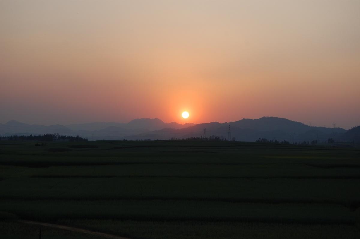 20102konmei_674