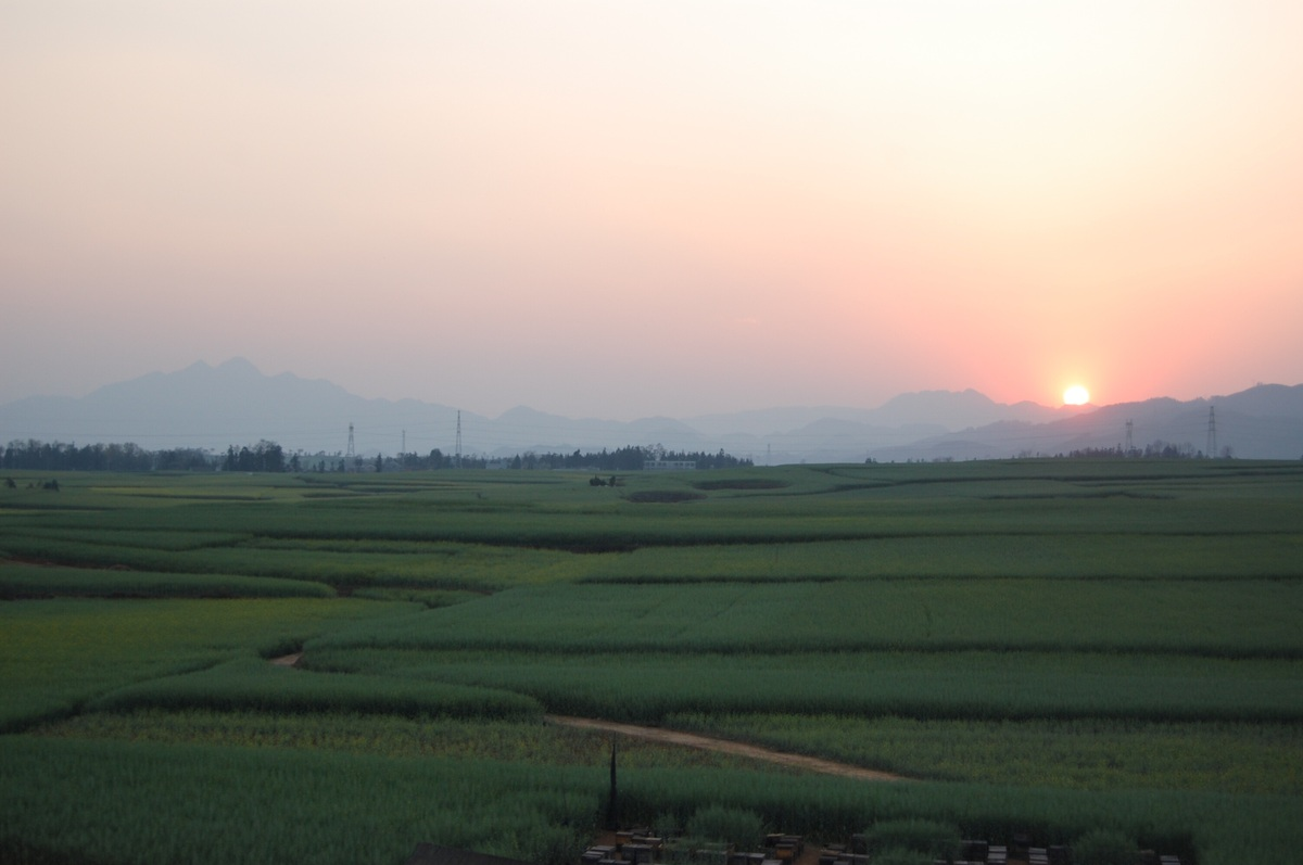 20102konmei_683