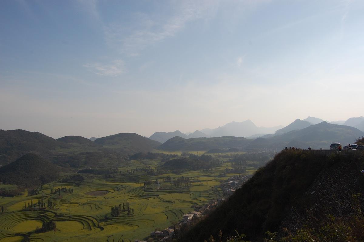 20102konmei_254