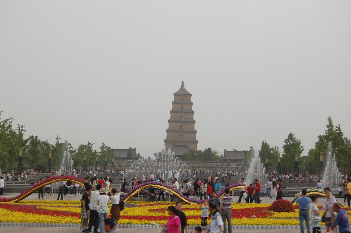 20105xianbeijin_497