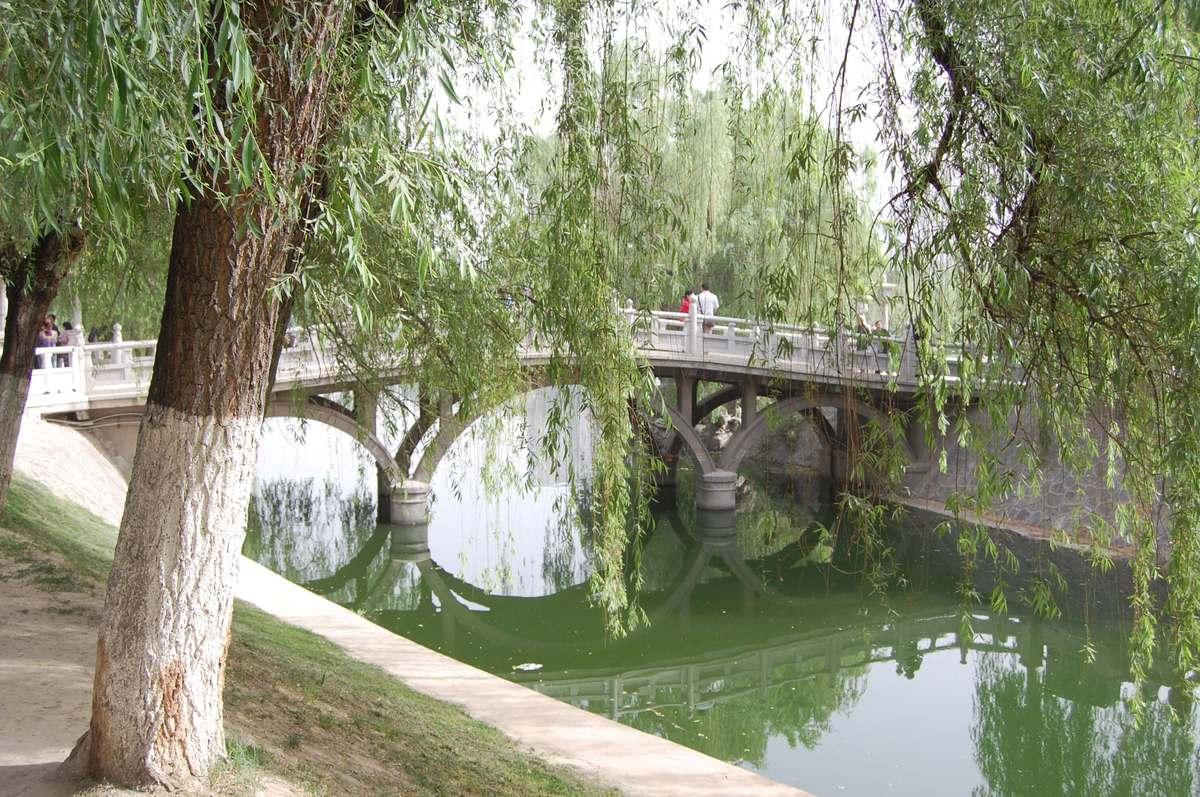 20105xianbeijin_268
