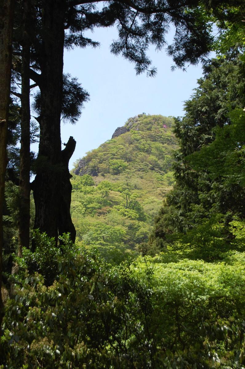20105tsukunasan_066