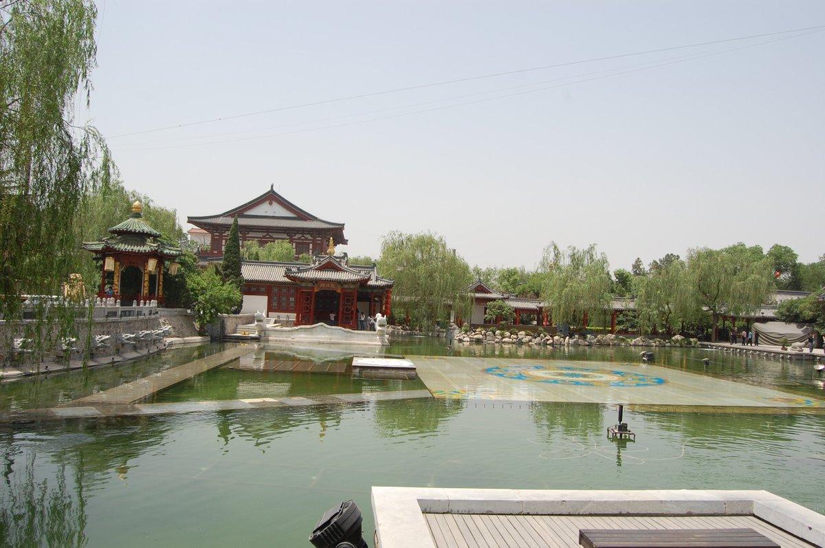 20105xianbeijin_554