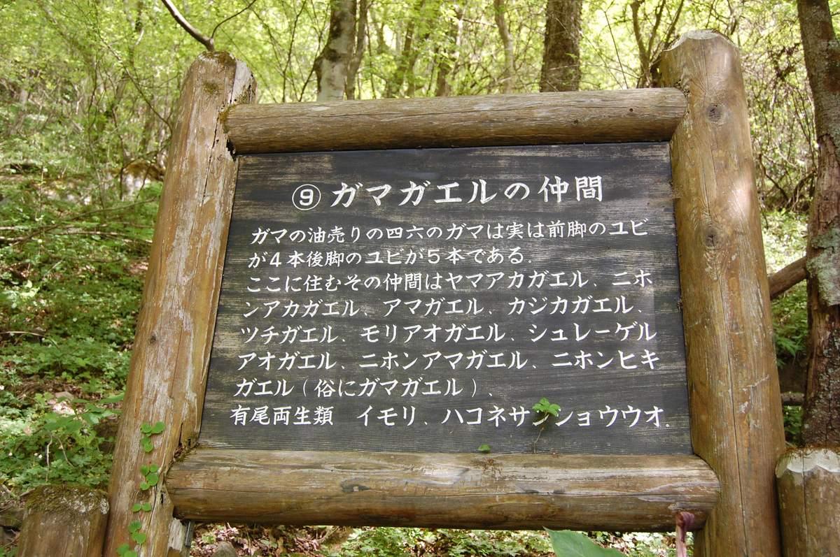 20105tsukunasan_159
