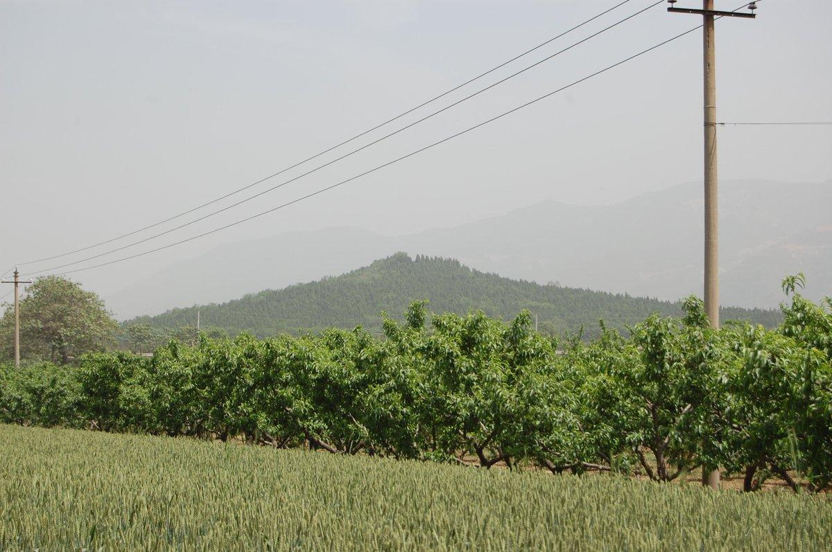 20105xianbeijin_564
