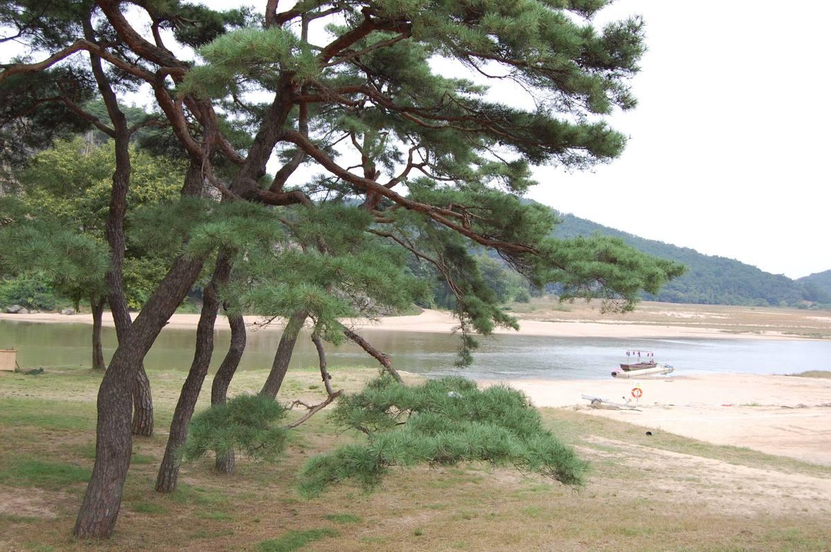 20109kudara_118