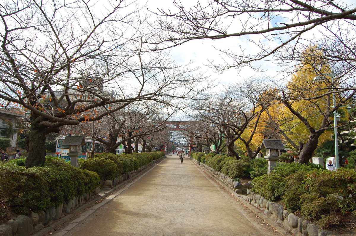 201011kamakura_007