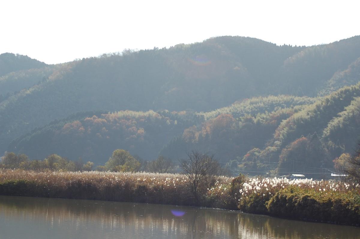 201012kinosaki_115