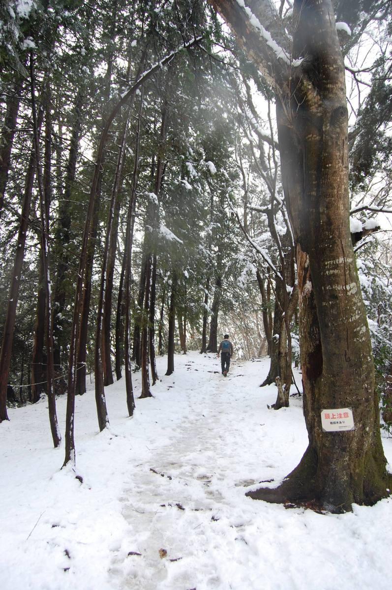 20113takao_032