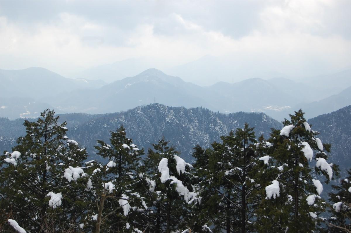 20113takao_048